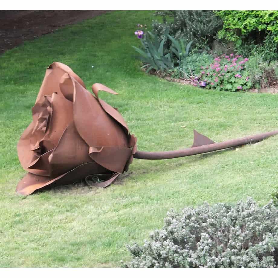 Roses-150cm--Fabricated-Steel-[Outdoor,Corten]Kooper-Folko-australian-flower-sculpture-outdoor-garden-art-leaves-nature