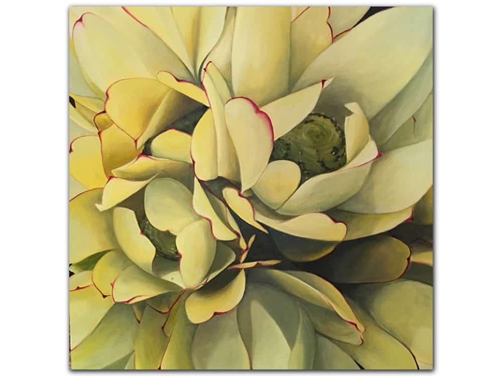 Yellow-Leucadendron_Masako_Oil-on-Canvas_122x122cm